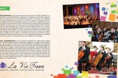 Divertimento Orchestra à Cordes Hollande Programmaboekje 2016